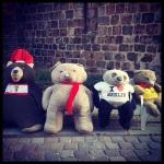 All the Bears.